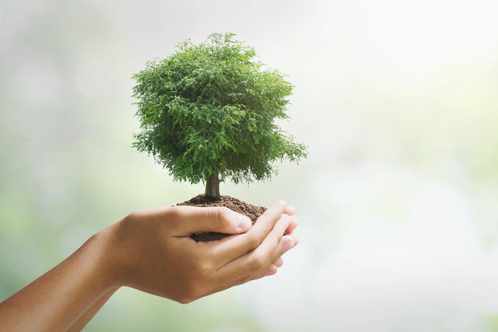 環境保護 イメージ